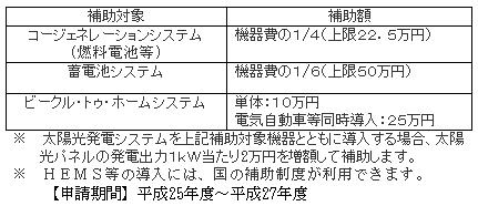 東京都スマートエネルギー都市推進事業2015